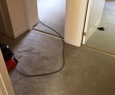 Professional Carpet Fitters